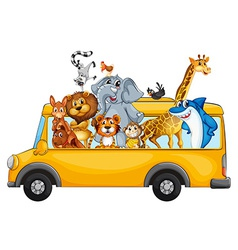 Animals on school bus vector
