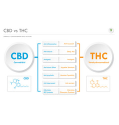 cbd vs thc medical applications horizontal vector image