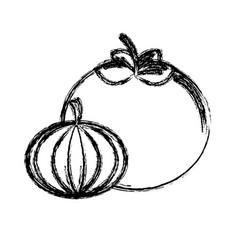 Contour tomato and garlic vegetable icon vector