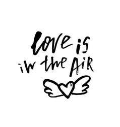 love is in the air - happy valentines day card vector image