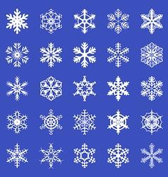 Snowflakes set blue vector