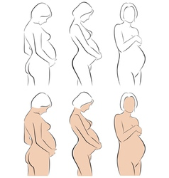 Stylized silhouettes of pregnant women vector
