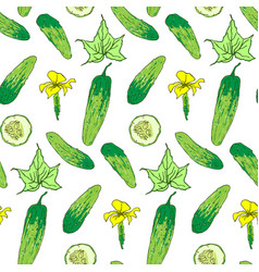 seamless pattern of cucumber whole and chunks vector image