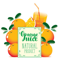 banner for orange juice with oranges and glass vector image vector image