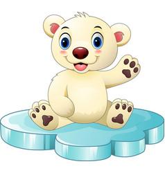 cartoon baby polar bear sitting on floe vector image