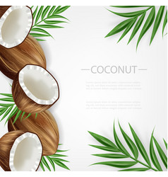 coconut background realistic layout vector image