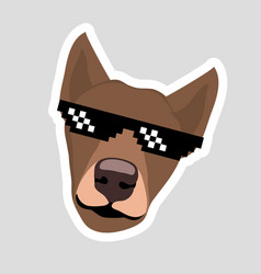 Dog sticker in pixel glasses super-duper brown dog vector