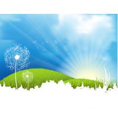 Grassland atmosphere with dandelions vector