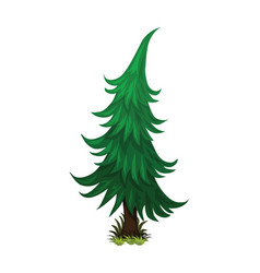 isometric cartoon spruce fir tree - element for vector image