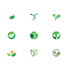 leaf green nature logo and symbol template vector image