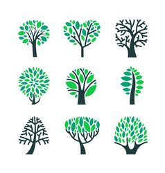 Trees with green leaves on branches set isolated vector