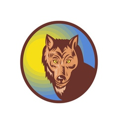 Wolf looking at the viewer vector image vector image