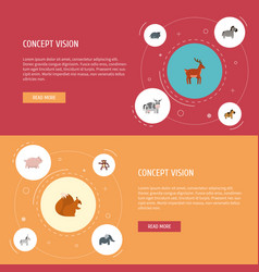 flat icons jackass kine pony and other vector image vector image