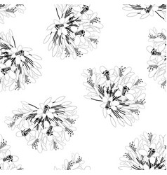 Agapanthus flower seamless on white background vector