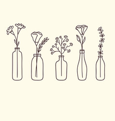 Flowers in bottles vector