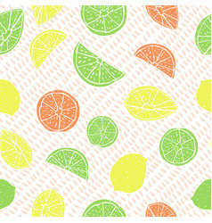 Multicolored hand drawn citrus fruit on drop vector