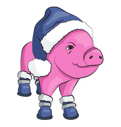 pig in a blue santa claus hat and shoes isolated vector image