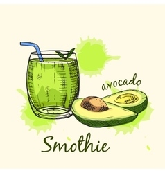 Sketch of avocado smoothie in glass colorful vector