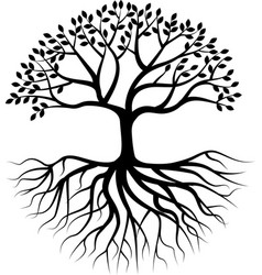 tree silhouette with root vector image