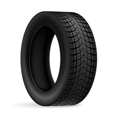 Car tire vector image
