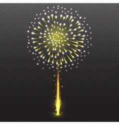 Set Festive Firework Salute Burst on Transparent vector image