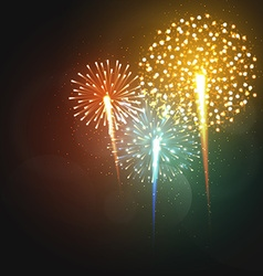 Set realistic fireworks different shapes Colorful vector image vector image