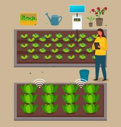 Urban agriculture farmer woman using modern vector