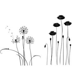 Collection wild plant poppy dandelion vector image vector image