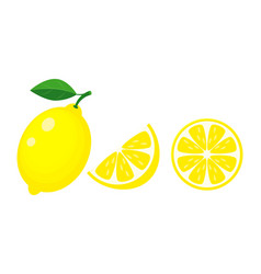 colorful whole half and slice lemon with green vector image