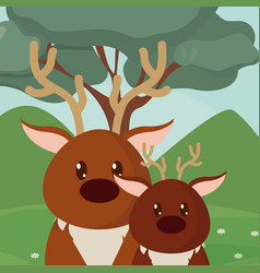 Deers cute animals cartoons vector