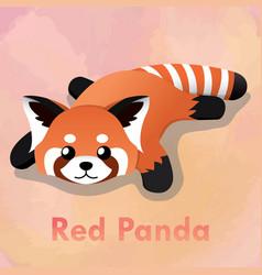 laying cute red panda vector image