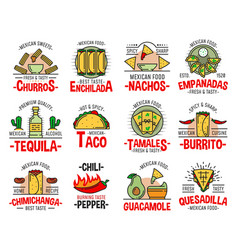 mexican fast food burrito nachos and tequila vector image
