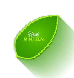 Mint leaf vector