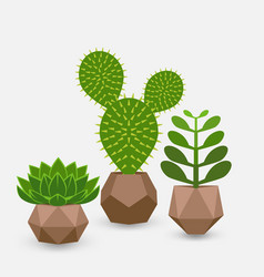 set houseplant succulents in pots vector image