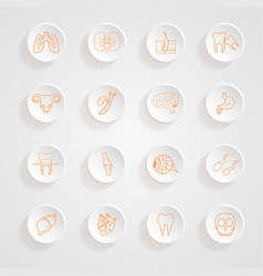 Set of contour of internal human Icons button shad vector