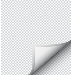 white checkered sheet paper vector image