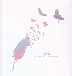 Colored feather with flying birds vector