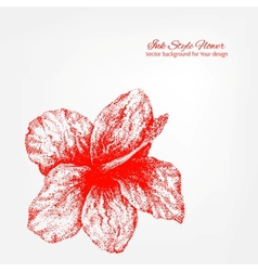 Elegant white and red floral card vector image