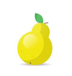 fresh juicy yellow pear icon tasty ripe fruit vector image