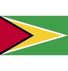Guyana flag image vector image