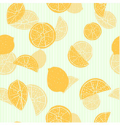 orange hand drawn citrus fruit silhouettes with vector image