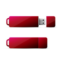red usb flash drive vector image vector image