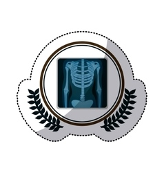 Color sticker with x-ray of bones in circle with vector