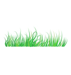 Green grass element vector image