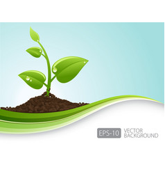 Green sprout growing and waves vector