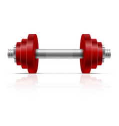 metal dumbbell for muscle building in gym vector image