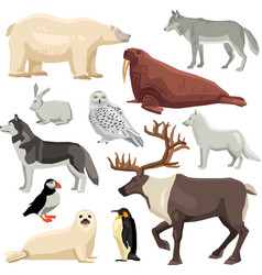 Polar Animals Set vector
