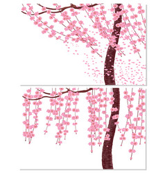 Sakura in the wind and in calm weather branches vector