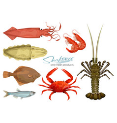 Seafood in cartoon style icons vector