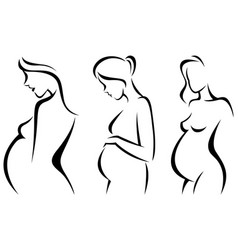 stylized silhouettes pregnant women vector image